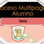 PROCESO MULTIPAGOS - ALUMNOS